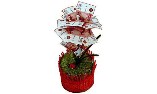 Денежное дерево 5000 рублей